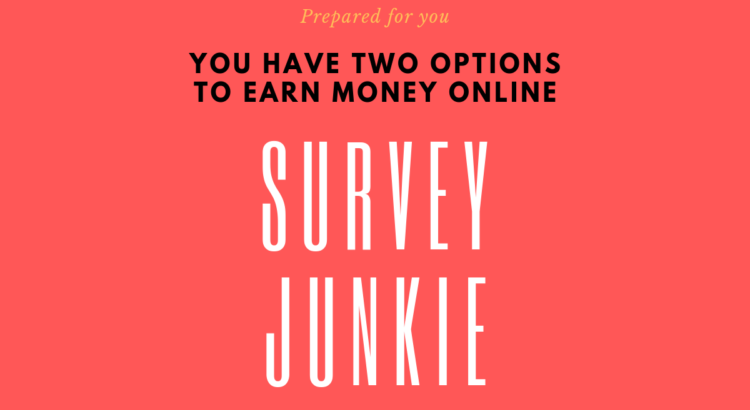 Survey Junkie Review: this is one of the 'best paid surveys sites'