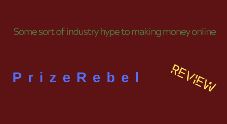 ' Prize Rebel' review. This company is great if you are searching for 'online surveys for money'.