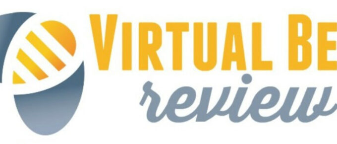 What is Virtual Bee and is it Legit? Review